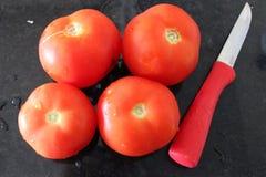 Свежий салат с томатами на плите стоковые изображения