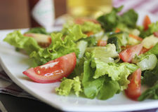 свежий салат Томаты и салат, healhty Стоковое Фото