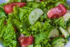 свежий салат Томат, огурец и зеленые цвета в белом шаре Стоковая Фотография RF