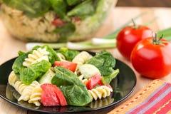 Свежий салат шпината и макаронных изделий rotini Стоковые Фотографии RF