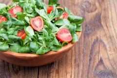 Свежий салат Стоковое Фото