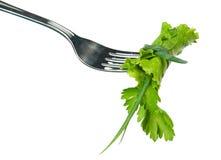 свежий салат Стоковые Изображения