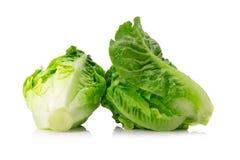 свежий салат cos младенца на белой предпосылке Стоковые Фотографии RF