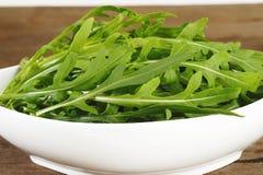 свежий салат rucola Стоковые Изображения RF