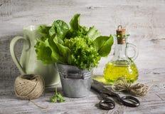Свежий сад травы в ведре металла, оливковом масле в стеклянной бутылке, старых винтажных ножницах и кувшине стоковые изображения rf