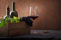 Свежий сбор виноградин и вина стоковое изображение