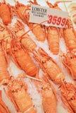 Свежий сваренный западный омар Австралии на задавленном льде на дисплее для продажи с ценником на рыбном базаре Стоковое фото RF