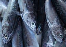 Свежий серебряный тропический крупный план рыб на таблице рыбного базара Океанские рыбы для кашевара обеда Стоковое Фото