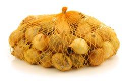 свежий сетчатый желтый цвет пластмассы перлы луков Стоковое фото RF