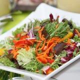 свежий смешанный салат Стоковые Изображения