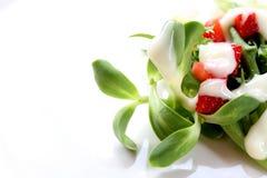 Свежий смешанный салат Стоковое Изображение RF