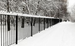 Свежий снег на улицах города стоковое изображение