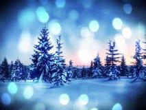 Свежий снег порошка покрыл деревья в горах За минуту до захода солнца Chill вечер Стоковое Фото