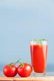 Свежий сок томатов установленный с укропом Стоковые Фотографии RF