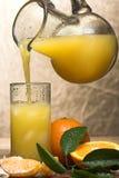 свежий сок Стоковое Фото