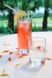 свежий сок Стоковые Изображения