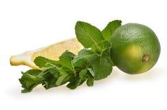 Свежий состав клин лимона, чеканит и светло-зеленый стоковое фото