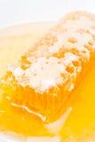 свежий сот меда Стоковое Изображение RF