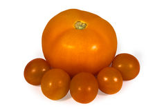 Свежий сочный красный изолированный томат Стоковое Изображение RF