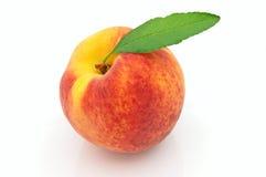 свежий сочный персик листьев Стоковое Изображение