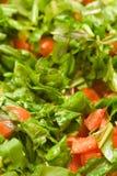свежий среднеземноморской салат Стоковое Изображение RF