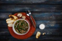Свежий суп гриба с хрустящими корочками сметаны и хлеба зеленого лука На керамической плите с столовым прибором покрашено деревян стоковое изображение rf