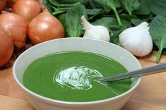 Свежий суп шпината Стоковые Фото