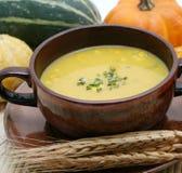 свежий суп Стоковые Изображения RF