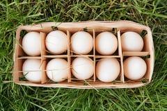 Свежий сырцовый белый цыпленок eggs в деревянной коробке на зеленой траве Стоковое фото RF