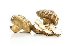 Свежий сырцовый гриб шиитаке изолированный на белизне Стоковые Изображения RF