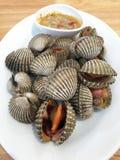Свежий сырцовый продукт моря раковины куколя с пряным соусом Стоковая Фотография