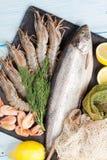 Свежий сырцовый продукт моря с специями Стоковые Изображения RF