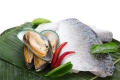 Свежий сырцовый продукт моря Стоковые Изображения RF