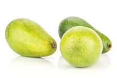 Свежий сырцовый ровный авокадо изолированный на белизне Стоковая Фотография