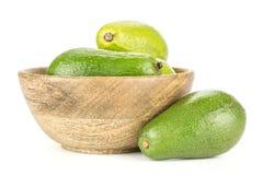 Свежий сырцовый ровный авокадо изолированный на белизне Стоковые Фото