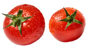 Свежий томат вишни изолированный на белой предпосылке с waterdrops - близкое поднимающим вверх Стоковые Изображения