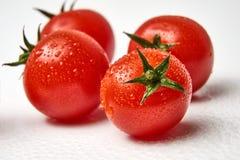 Свежий томат вишни на белой предпосылке с waterdrops Стоковые Фотографии RF