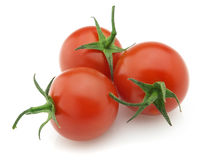 свежий томат Стоковое Изображение RF