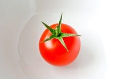 свежий томат Стоковые Фотографии RF