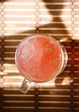 Свежий холодный коктеил Стоковые Изображения RF