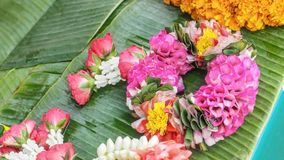 Свежий цвет пинка гирлянды управления рулем ремесленничества орхидеи красив Стоковое Изображение
