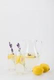 Свежий цитрус выпивает с цветками лаванды в стеклах стоковое изображение