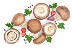 Свежий champignon величает при петрушка, перчинки и накаленные докрасна перцы chili изолированные на белой предпосылке Взгляд све Стоковая Фотография