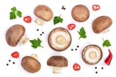Свежий champignon величает при петрушка, перчинки и накаленные докрасна перцы chili изолированные на белой предпосылке Взгляд све Стоковые Изображения RF