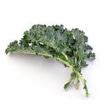 Свежий kale Стоковое Изображение RF