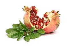 свежий pomegranate зрелый Стоковые Фотографии RF