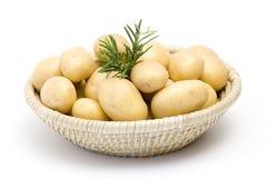 свежий rosemary картошек Стоковые Изображения