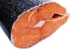 Свежий salmon стейк изолированный на белой предпосылке Salmon красный стейк рыб Большая куча стейка форели Большие органические с Стоковые Изображения