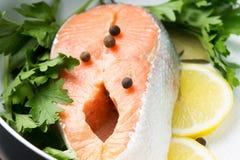 Свежий Salmon стейк с травами в баке Стоковое Фото