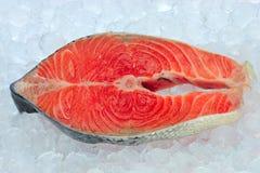 свежий salmon стейк стоковое изображение